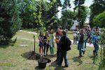 6.06.2012r.  Akcja sadzenia Trójkowego Drzewka